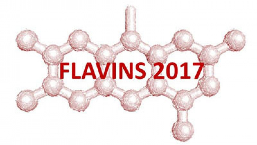 19th International Symposium on Flavins and Flavoproteins
