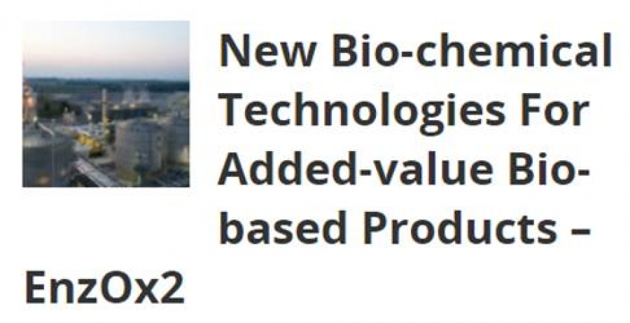 New Bio-chemical Technologies For Added-value Bio-based Products – EnzOx2 in BeSustainable Magazine